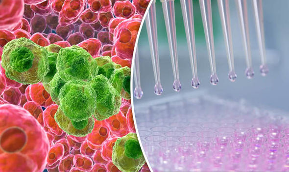 To fight against cancer, a new treatment has been discovered through immunotherapy.